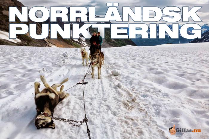 Ifall du någonsin undrat hur en Norrländsk punktering ser ut