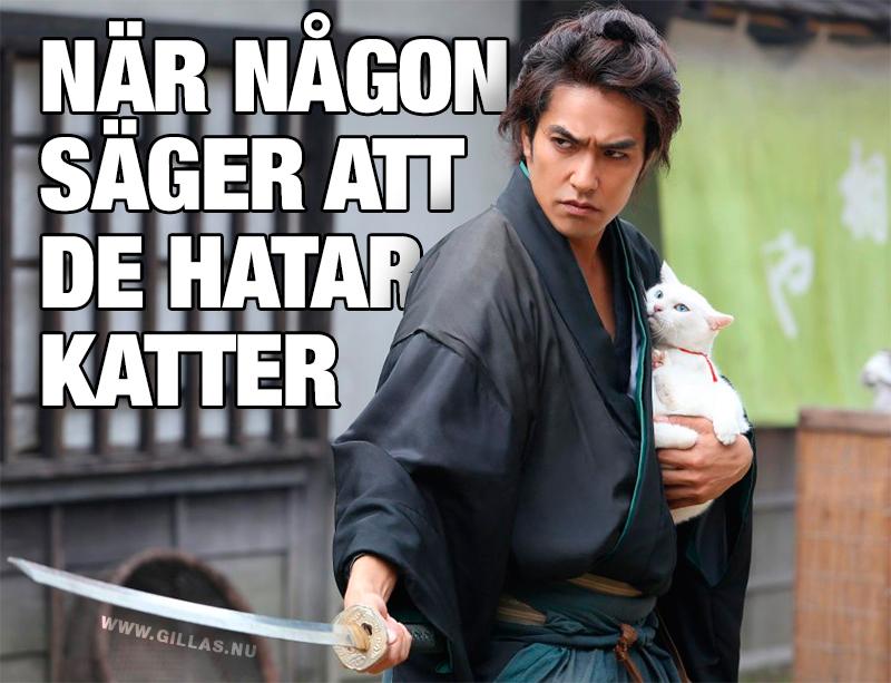 Man (samuraj) försvarar en katt - När någon säger att de hatar katter