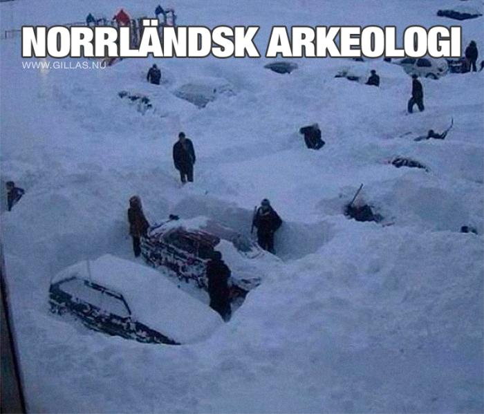 En vanlig morgon i Norrland…