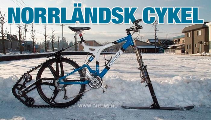 Ifall du någonsin undrat hur en norrländsk cykel ser ut