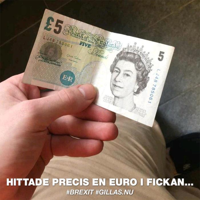 Angående det Brittiska Pundets ras gentemot euron