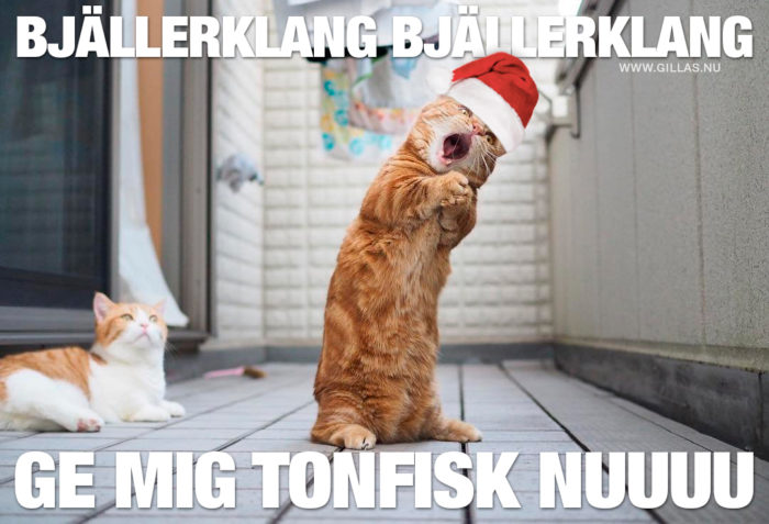 Det enda logiska låtvalet om en katt skulle försöka sig på en julsång