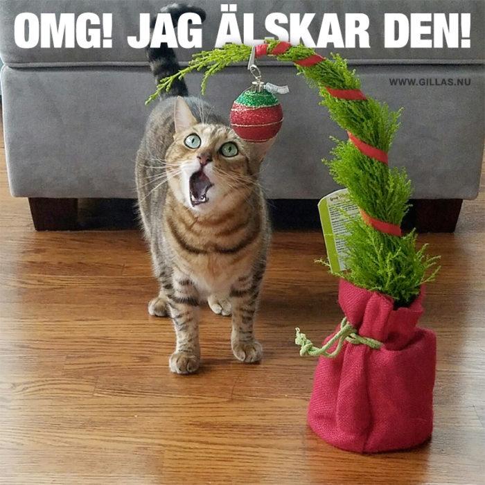 Vissa julklappar är bättre än andra