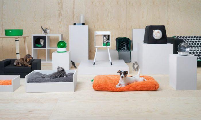 """Ikea har lanserat kollektionen """"Lurvig"""" – med möbler för hundar och katter"""
