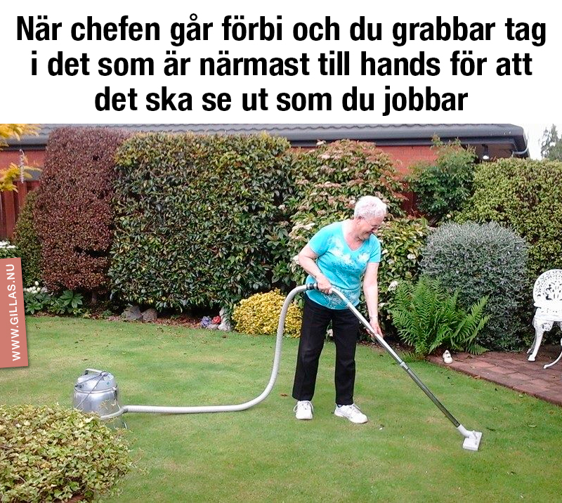 Kvinna som dammsuger gräsmatta