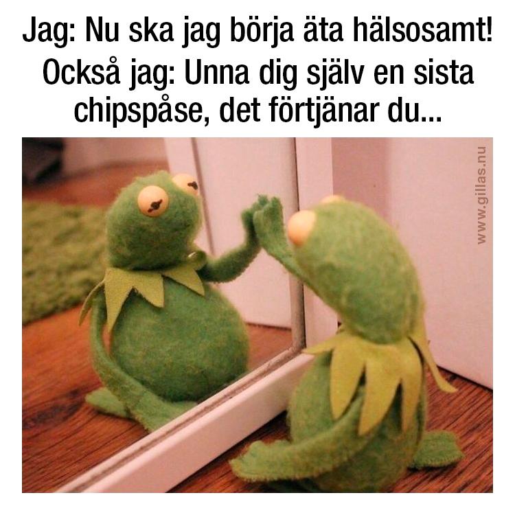 Grodan Kermit framför spegel