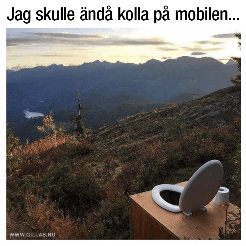 Toalettstol med utsikt över berg och sjö