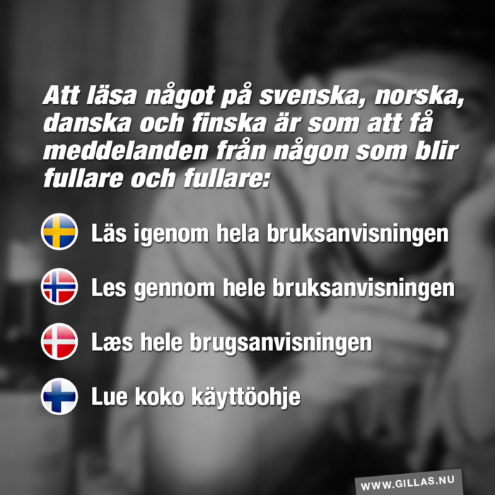 Att läsa något på svenska, norska, danska och finska