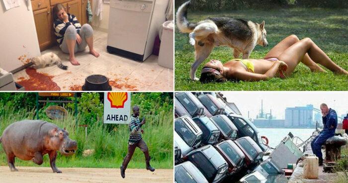 Tjugo bilder som påminner oss om att dagen faktiskt kunde varit värre!