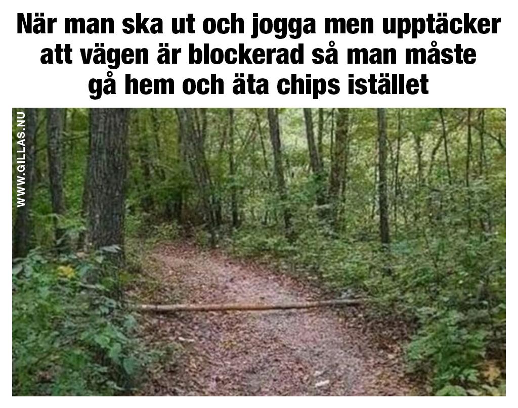Roligt citat om jogging