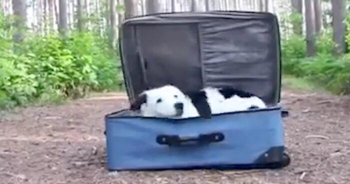 VIDEO: När man ska ut och resa gäller det att få med sig det viktigaste!
