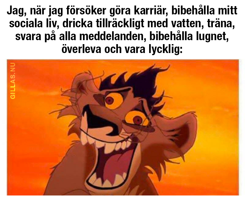 Stressat lejon
