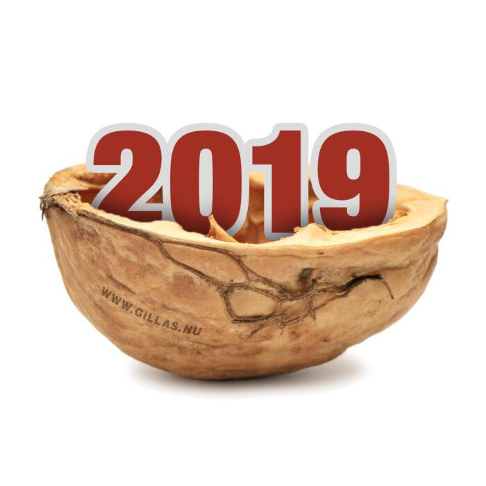 2019 i ett nötskal