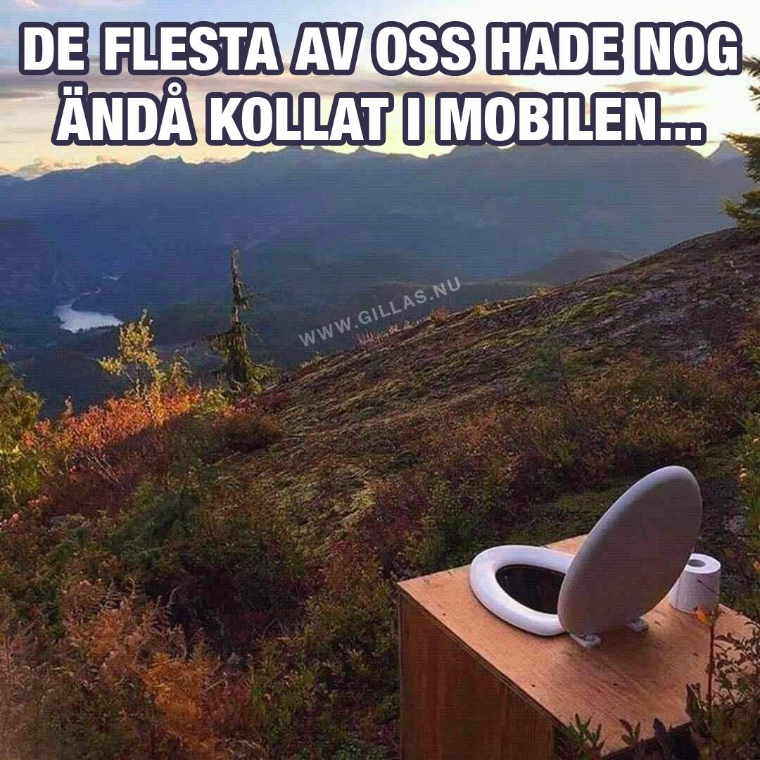 Toalettstol i naturen