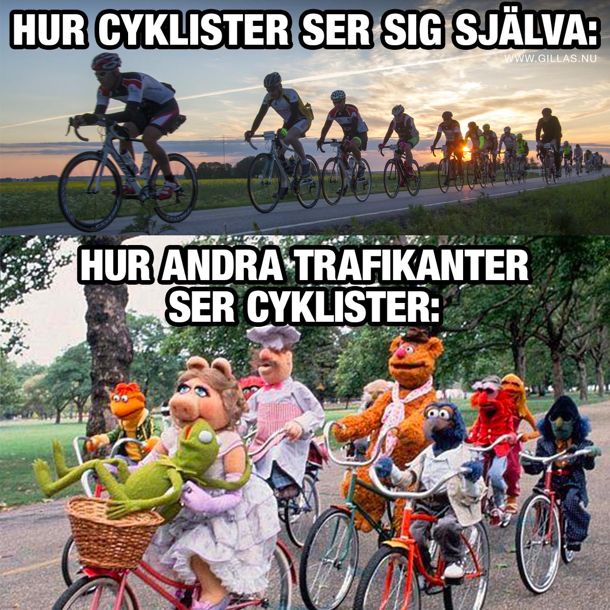 Vanliga cyklister och mupparna på cykel